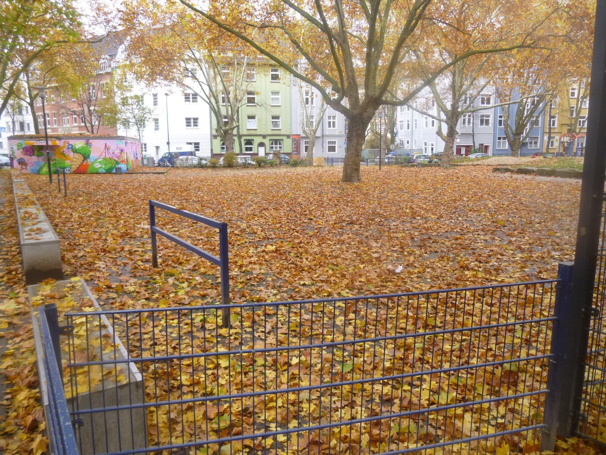 Laub auf dem Hermannplatz